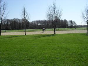 großer Reitplatz auf Artmanns Hof